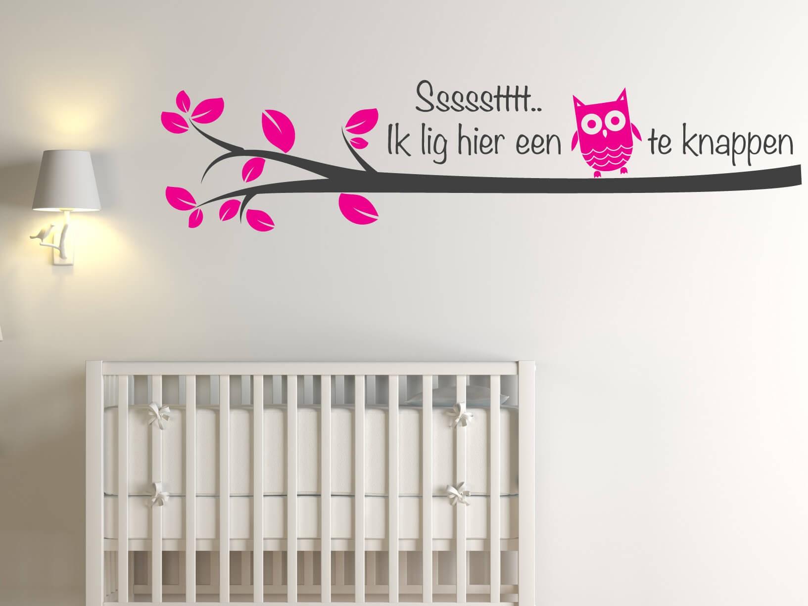 Muursticker ssssstttt ik lig hier een uiltje te knappen for Muurdecoratie babykamer