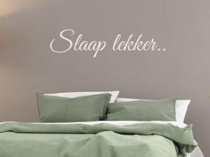 "Muursticker ""Slaap lekker.."""